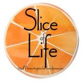 sliceoflifesmallorangepic