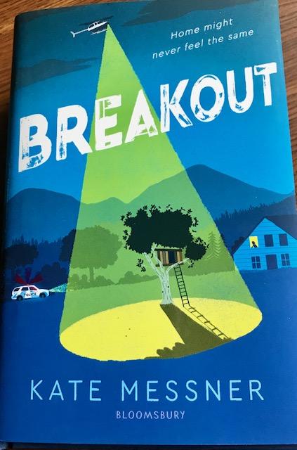 Breakout_Messner2018